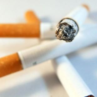 Tabaco Mitos y Realidades