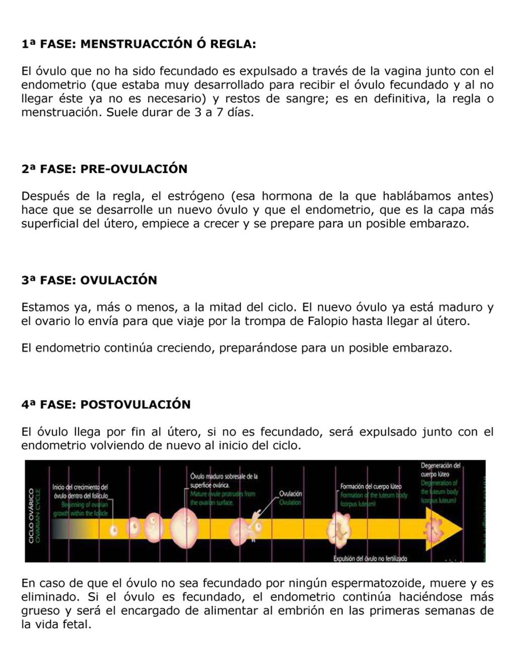 CICLO MENSTRUAL Y REGLA-2